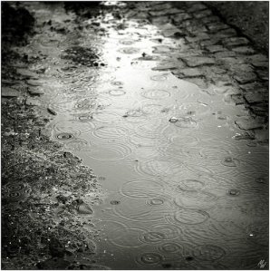 rain 02